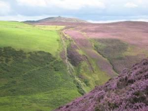 Clwydian Range from Moel Arthur